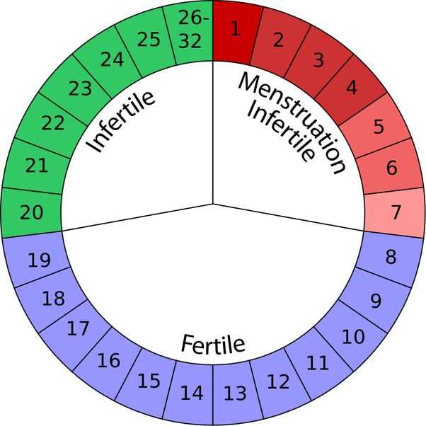 Tracking Your Menstrual Cycle