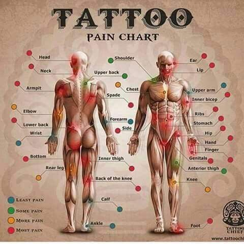 Everyone Has Diffe Pain Tolerance To Give More Details Here Is A Picture That Explains Various Tattoo Pains On Body Parts