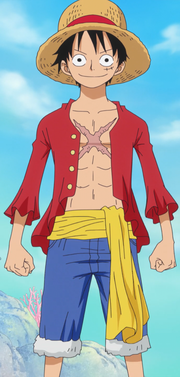 How Did Luffy Get His Scar In One Piece Quora
