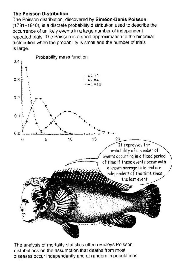 What is a Poisson Distribution example? - Quora