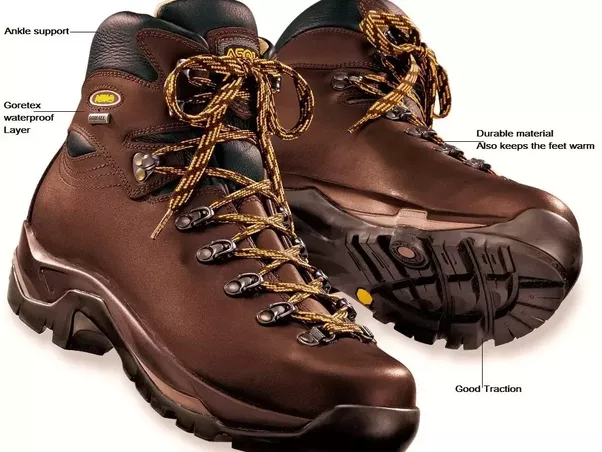 What Is The Best Trekking Shoe Brand With Price For