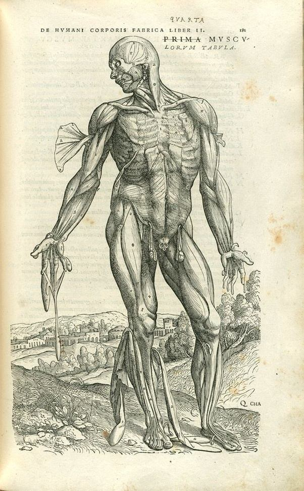 Which is the anatomy book where people pull up their skin? - Quora