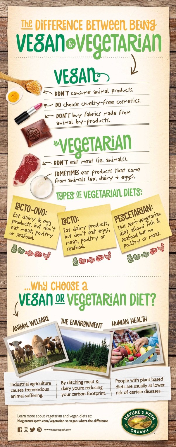 whats the difference between vegan and vegetarian diet
