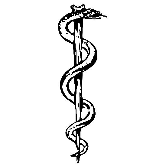 Why Are There A Snake And Wings On The Doctor Symbol What Do They