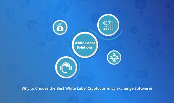 how to choose an exchange to issue your cryptocurrency
