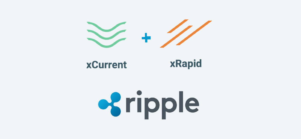 What's your prediction for XRP Ripple cryptocurrency for