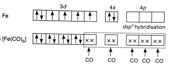 Molecular Orbital Diagram Of Feco5 Car Wiring Diagrams Explained