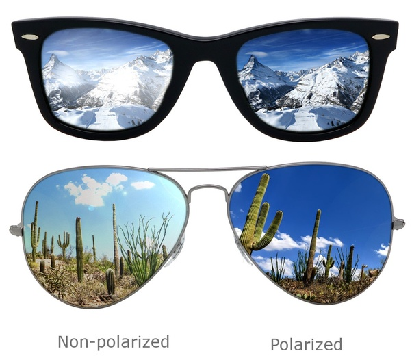 782c759a4352 ... and allow vertical waves to pass through lenses to the eye. Wearing polarized  sunglasses will improve comfort and visibility
