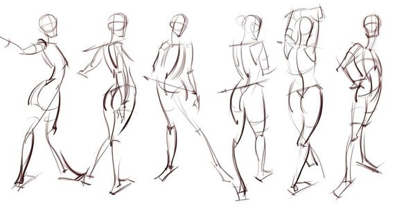 Contour Line Drawing Pdf : What are the differences between figure drawings gesture