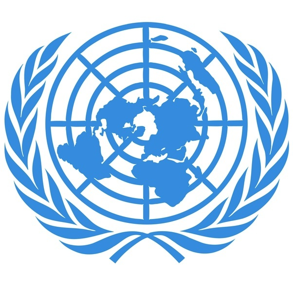 Image result for united nations logo