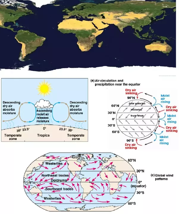 Why are most of the worlds deserts located on the western margins fig global desert distribution wind movement pattern gumiabroncs Images