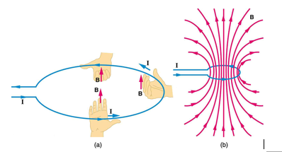 Magnetic Field Lines For A Wire By applying the...
