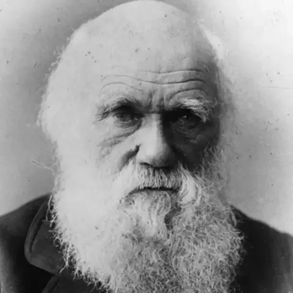 charles darwins contribution to 19th century england This is a long but rewarding two-volume biography, covering the details of darwin's life but emphasizing broader ideas and themes in his contribution to science and his embedding in the world of 19th century england.