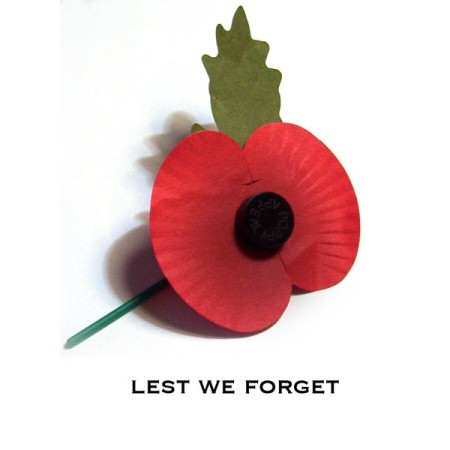 What is the meaning of the red poppy on suits in the uk quora in flanders fields the poppies blow between the crosses row on row that mark our place and in the sky the larks still bravely singing fly mightylinksfo Choice Image