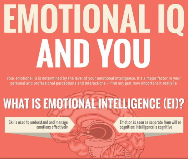 What Are Some Examples Of People With A High Emotional Quotient Eq