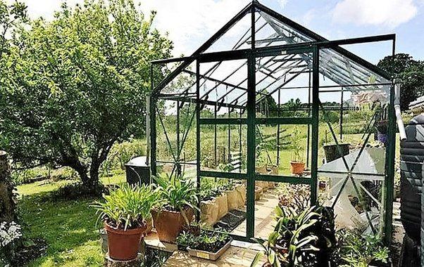 Should I turn my garden into a small greenhouse? - Quora