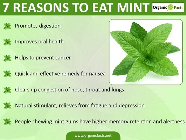 Bad Side Effects Of Drinking Green Tea