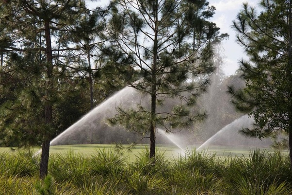 What are the different types of irrigation sprinklers? - Quora