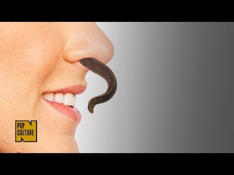 what will happen if a leech accidentally enters inside your stomach
