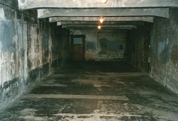 Image result for the holocaust, auschwitz gas chambers