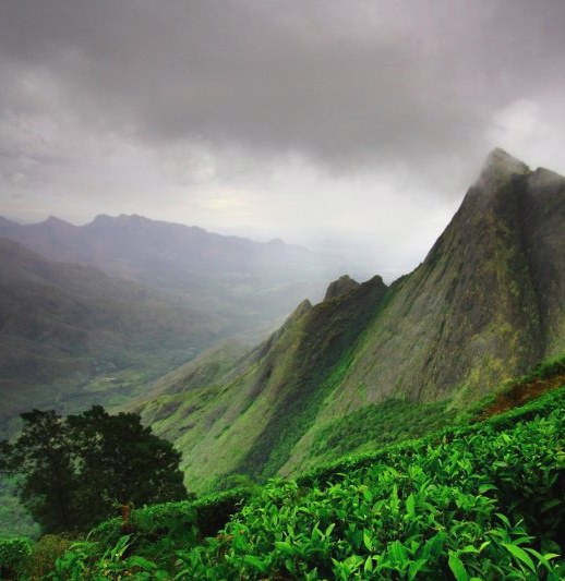 Kerala Places To Visit: What Are The Best Places To Visit In Kerala?