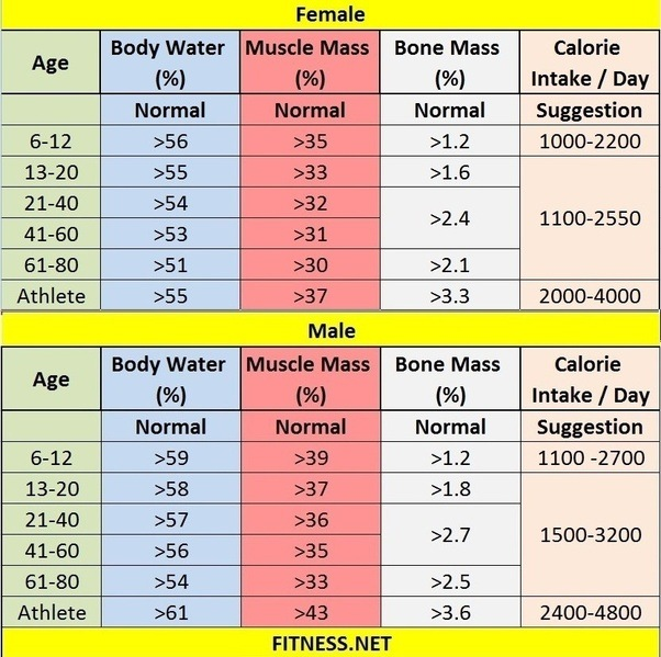 What should be the muscle mass and fat mass in a healthy ...