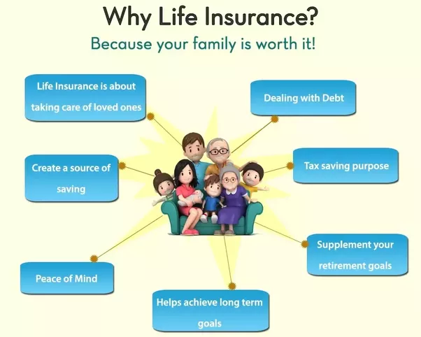 What are the important points for buying life insurance ...
