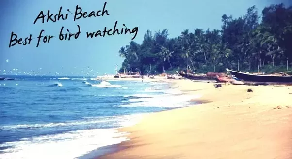 Hotels Near Nagaon Beach Alibaug