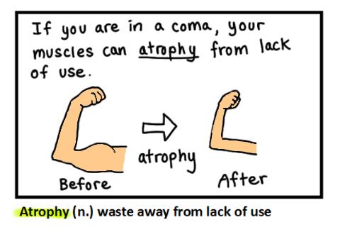 how to prepare for toefl quora