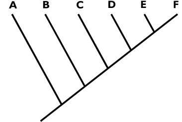 the cladogram above can get a minimum of 5 valid names under phylocode