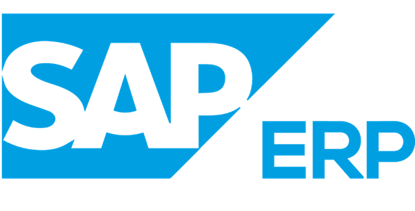 difference between sap and erp pdf