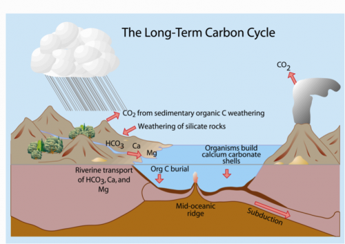 how to keep carbon dioxide concentration constant