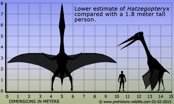 在第一次飞行的恐龙之前,什么样的生物是什么样的?