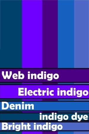 Indigo Blue Paint Colour