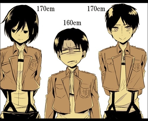 How Old Is Levi Ackerman Attack On Titan Quora