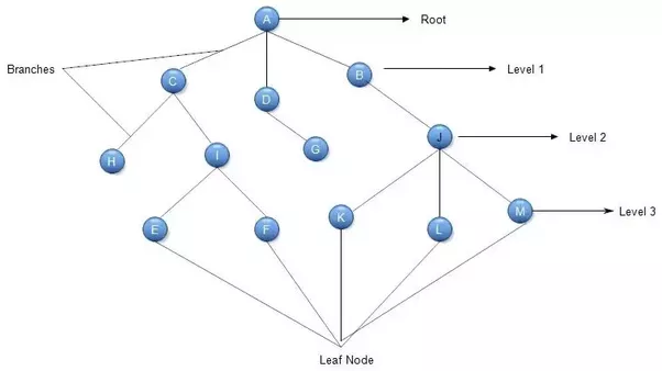 What Is A Tree In Terms Of Data Structures And Computer Science Quora