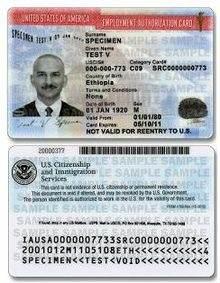 Sample Employment Authorization Form | What Is Gc Ead Visa Quora