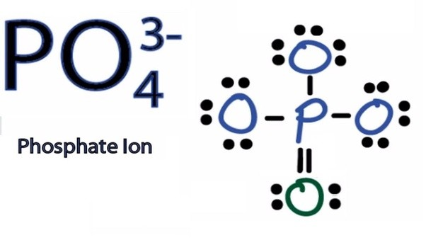 How To Determine The Lewis Dot Structure Of Ammonium Phosphate Nh4