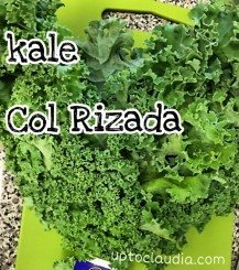 Can you eat uncooked kale