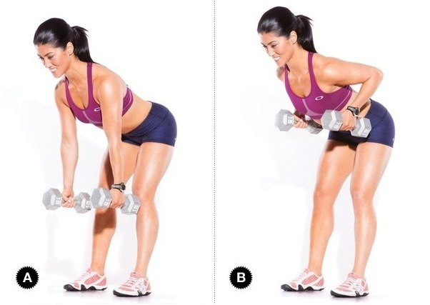 What Are The Best Exercises For Lats Quora