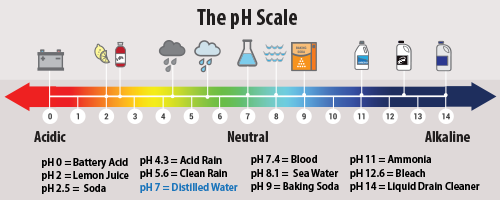 ph and concentration relationship memes