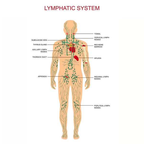 What is the average cost of treatment for lymphoma in India