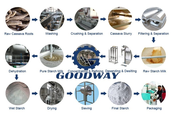What is the process during cassava starch production line