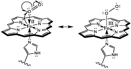 Energy Diagram Of Hemoglobin Group