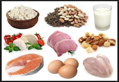 Examples Of High Fat Foods