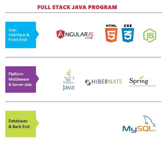 what do we need java for