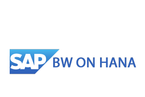 heshe should have worked on projects involving sap bw modeling with respect to sap hana using composite providers advance dsos odp lsa and using bw