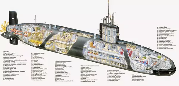 Akula Class Submarine Diagram Vanguard Class Submarine Wire Diagrams