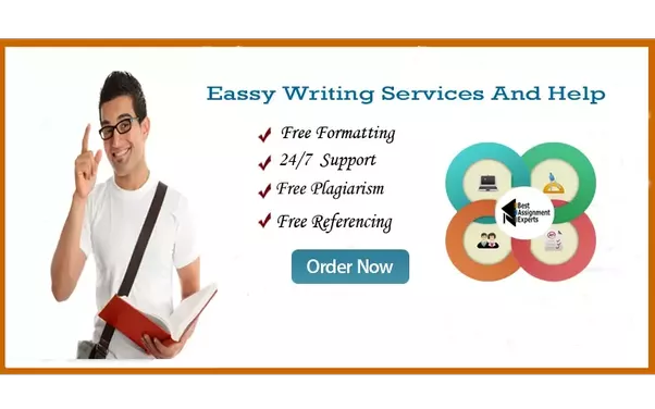 pro essays custom essay writing