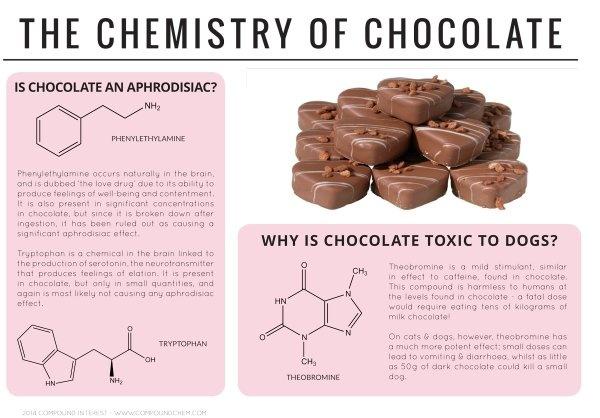 essay chemistry in everyday life